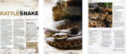 Rattlesnake recipes article